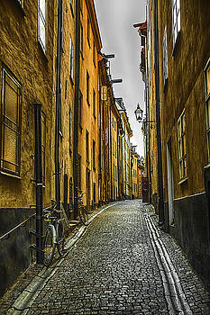 Old Town Alley by Fernando Margolles