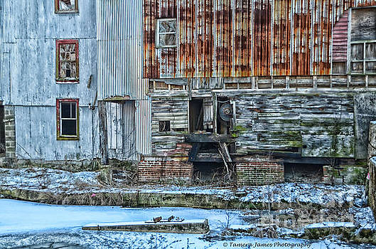 OldMill by Tamera James