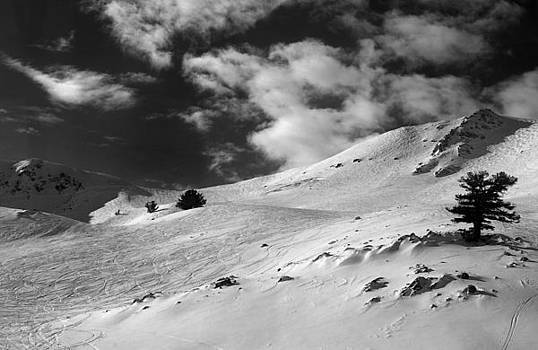 On the top of the World Snow and Sky Snowbasin mountain Utah. Black and White Print. by Anton Oparin