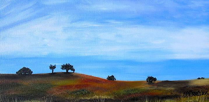 Open Field by Melissa Torres