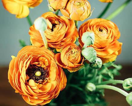 Orange ranunculus bouquet by Nastasia Cook