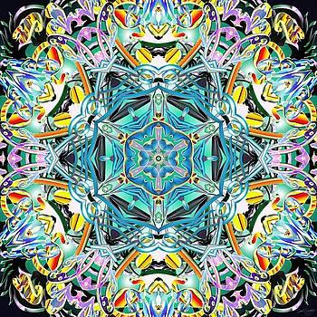 Order Within Chaos by Derek Gedney