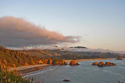 Oregon Coast Sunset by Michael Trofimov