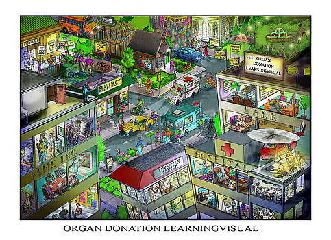 Organ Donation Learningvisual by Richard Erickson