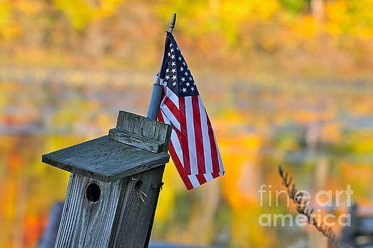 Our Colorfall Flag by Jay Nodianos