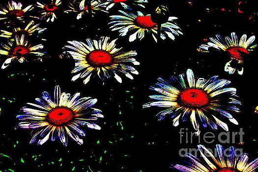 Painted Daisies  by Jay Nodianos