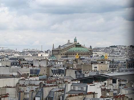 Paris rooftops by Elizabeth Hardie