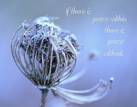 Peace by Michelle Ayn Potter
