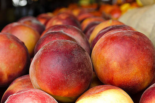 Peaches as Far as the Eye Can See... by Mindee Fredman
