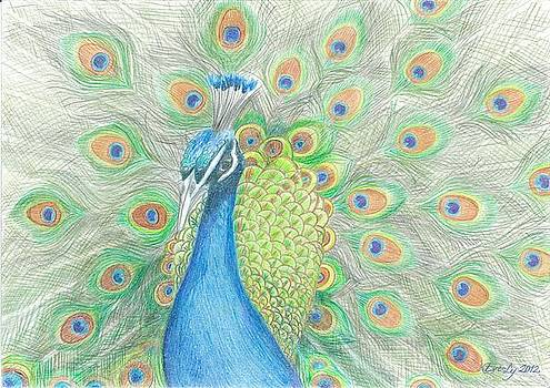 Peacock by Eve-Ly Villberg