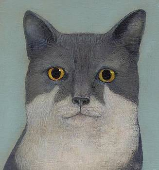 Perry the cat by Francis Ashley