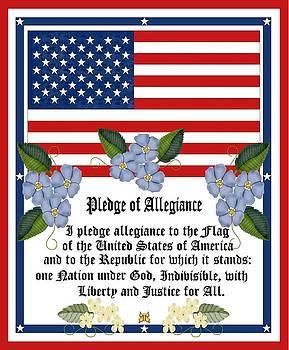 Pledge of Allegiance by Anne Norskog