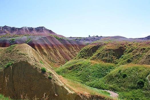 Purple Hills by Daniel Rooney