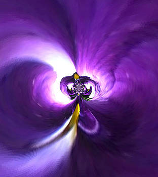 Purple Pansy by Mary Ann Southern