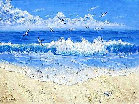 Quiet Beach by Randall Brewer
