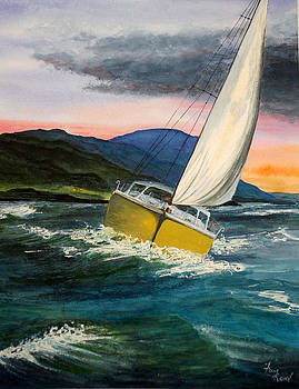 Race the Storm by Fay Reid