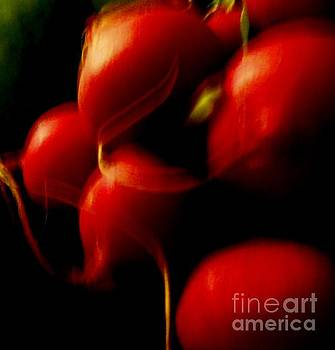 Radishes Ignited by Sharon Costa
