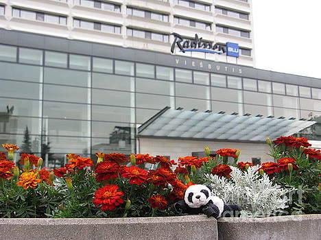 Radisson Blu Lietuva. Baby Panda Likes It by Ausra Huntington nee Paulauskaite