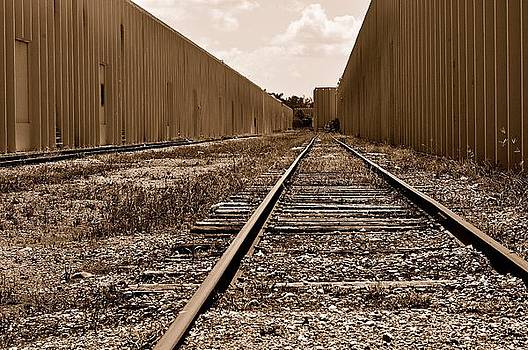 Railroad by Andres LaBrada