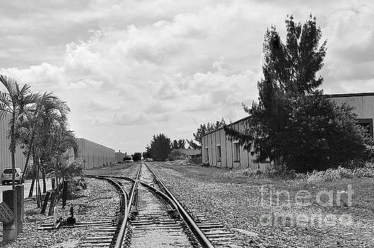 Railroad Paths by Andres LaBrada