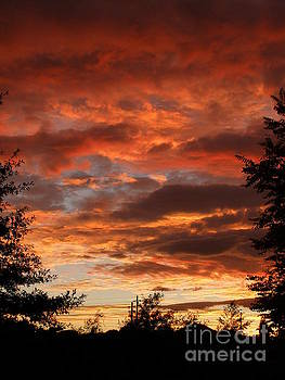 Red Sunrise by Bev Conover