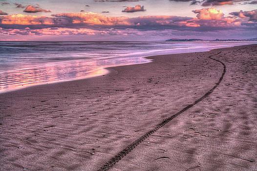 Rimini Beach by Craig Brown