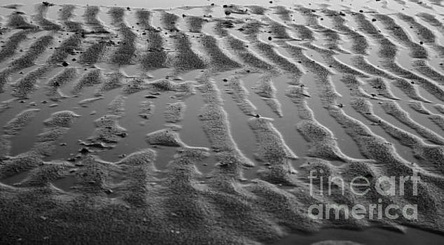 Ripples in the Sand by Kathy DesJardins