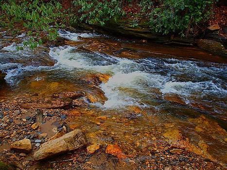 River Rocks by Judy  Waller