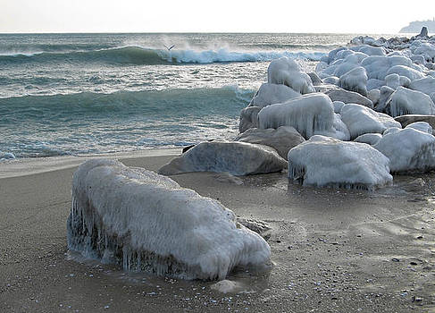 Rocks covered in ice on the sea shore by Kiril Stanchev
