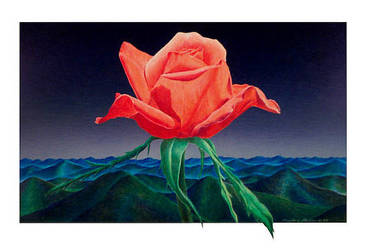 Rose in Blue Ridge by Kenneth Stockton