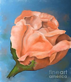 Rosebud Peaches and Cream by Judy Filarecki