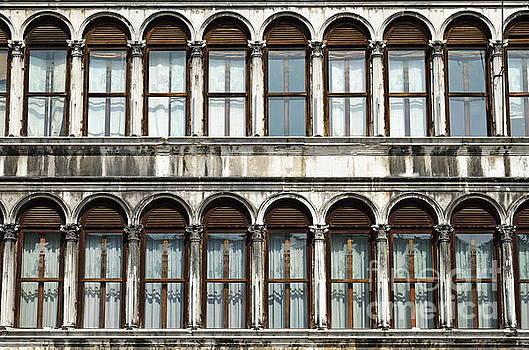 Row of windows by Sami Sarkis