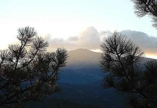 Ruidoso Mountain View 1 by Brett Smith