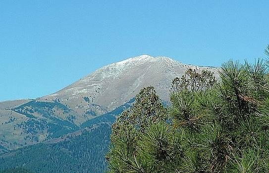 Ruidoso Mountain View 3 by Brett Smith