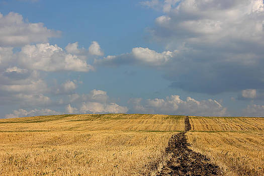 Rural Landscape in the Country by Kiril Stanchev