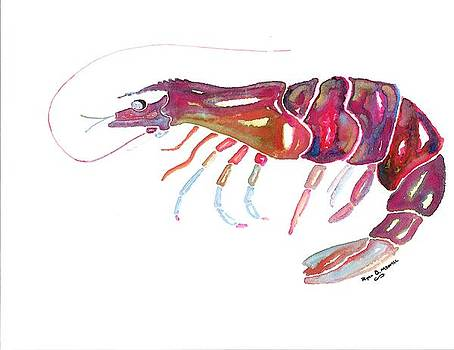 Rustic Shrimp by Ryan D Merrill