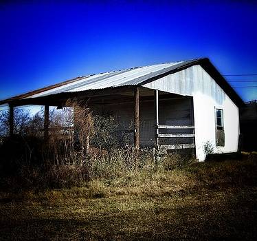 Sagebrush Shed II by Mary Ann Southern