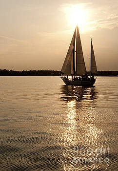 Sailboat at sunset by Cheryl Casey