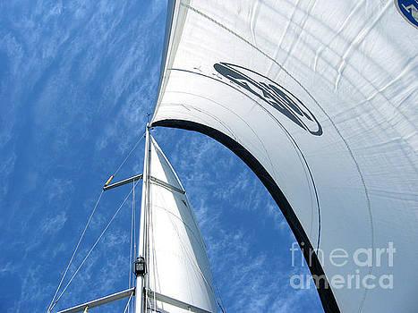 Sailing by Miki Karni