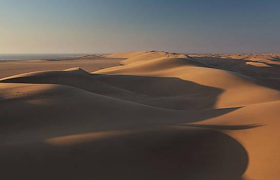 Sand Dunes At Sunset Near Swakopmund by Alex Saberi