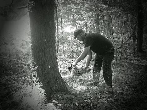 Sawing A Tree by Amanda Bobb