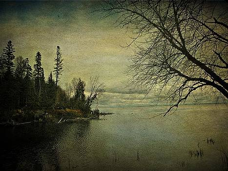 Scenic Lake Nipissing  by Dianne  Lacourciere