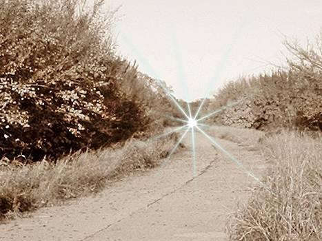 Sepia Haunted 66 by Trevor Hilton