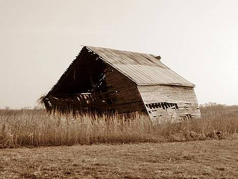 Sepia Old Barn by Trevor Hilton