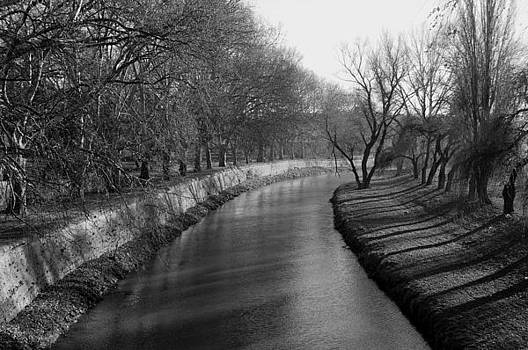 Shadows on river bank by Peter Kallai