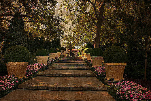 Shady Garden Walk by Cindy Rubin