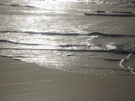 Shimmering Tide by Brooke Finley