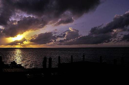 Silhouetted sunset by Andres LaBrada