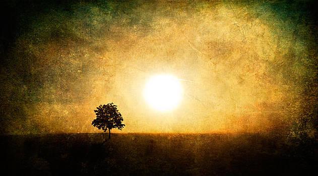 Sing in Silence by Roman Solar