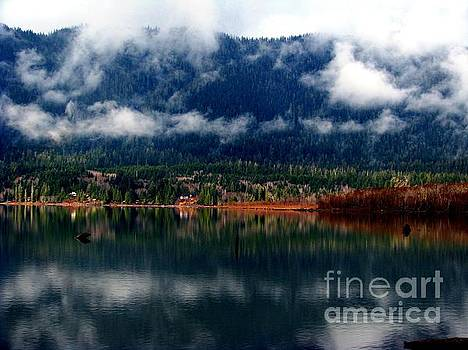 Smokey Reflections by Laurie Wilcox